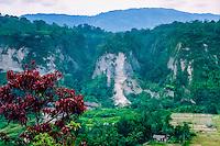 West Sumatra, Bukittinggi. Sianok canyon (Ngarai Sianok) is a steep valley (ravine) located in Bukittinggi, about 15 km long.