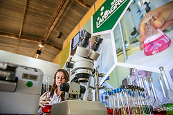 Lanagro demonstrando análises laboratoriais durante a 38ª Expointer, que ocorrerá entre 29 de agosto e 06 de setembro de 2015 no Parque de Exposições Assis Brasil, em Esteio. FOTO: Pedro H. Tesch/ Agência Preview