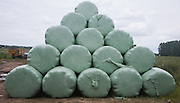 Pile of green plastic bags storing grass for silage