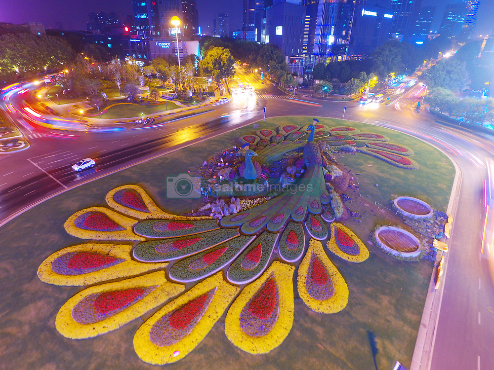 June 13, 2017 - Nanjing, Nanjing, China - Nanjing, CHINA-June 13 2017: (EDITORIAL USE ONLY. CHINA OUT)..Night view of the giant green sculpture of peacock in Nanjing, east China's Jiangsu Province, June 13th, 2017. (Credit Image: © SIPA Asia via ZUMA Wire)