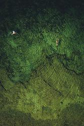 THEMENBILD - Urlauber schwimmen in der Adria, aufgenommen am 05. Juli 2020 in Novigrad, Kroatien // Tourists swimming in the Adriatic Sea in Novigrad, Croatia on 2020/07/05. EXPA Pictures © 2020, PhotoCredit: EXPA/ JFK