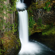 Toketee Falls is one of the most famous waterfalls in Oregon.  It is recognized for its graceful columnar basalt formation that frame the two tiers of the falls. The waterfall is 113 feet high with a 28 foot upper fall and and a 85 foot lower fall that plunges into a wide pool.  The North Umpqua River carved a gorge out of the lava flow which resulted in this marvelous waterfall.  Above the waterfall is a dam from which most water is diverted to a powerhouse down stream through a wooden 12 foot diameter pipeline. The pipeline is visible from the trailhead parking lot. As a result of the dam and the diversion of the North Umpqua River, the river has been artifically tamed allowing the river to flow in an extremely consistent manor all year long.