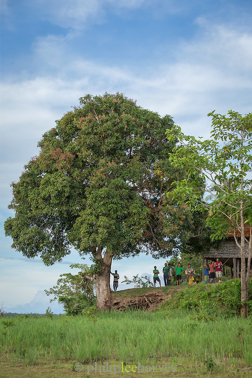 Locals stand on the outskirts of Togum Village, Lake Murray, Middle Fly District, Western Province, Papua New Guinea