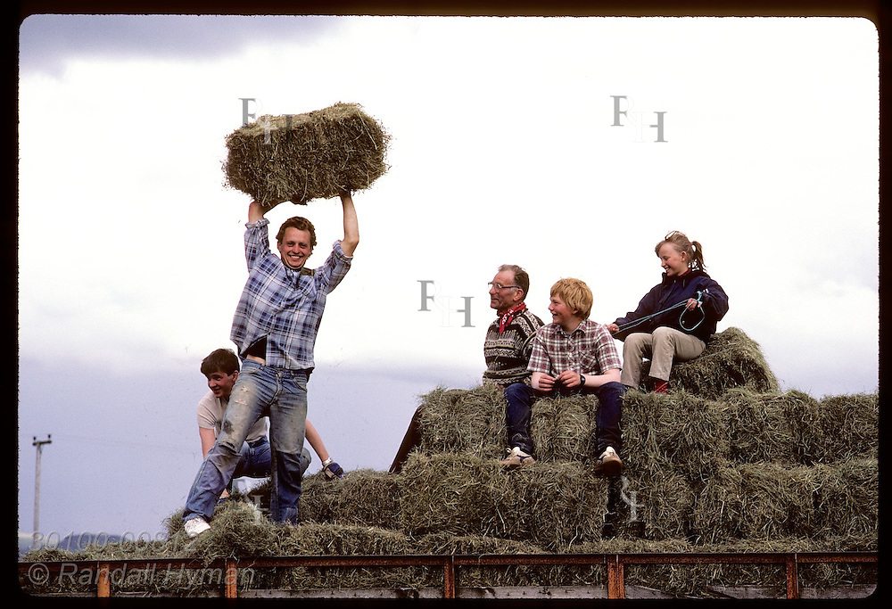 Farm family cavorts atop hay in flat-bed truck after stacking bales from field; near Skalholt Iceland