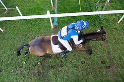 Svennerstal Ludwig (SWE) - Alexander<br /> Cross Country - CCI4* <br /> Mitsubishi Motors Badminton Horse Trials 2014 <br /> © Hippo Foto - Jon Stroud