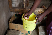 Linna Kinabo collecting the days eggs from her chickens. <br /> <br /> Linna set up and now runs a poultry business selling both eggs and meat.<br /> <br /> She attended MKUBWA enterprise training run by the Tanzania Gatsby Trust in partnership with The Cherie Blair Foundation for Women.