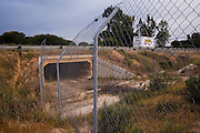 Faunal Bi-passes built under the road for animals to connect between various area of the park. This has reduced road kills in animals like the Iberian Lynx.<br /> Wetland Reserve<br /> Doñana National & Natural Park. Huelva Province, Andalusia. SPAIN<br /> 1969 - Set up as a National Park<br /> 1981 - Biosphere Reserve<br /> 1982 - Wetland of International Importance, Ramsar<br /> 1985 - Special Protection Area for Birds<br /> 1994 - World Heritage Site, UNESCO.<br /> The marshlands in particular are a very important area for the migration, breeding and wintering of European and African birds. It is also an area of old cultures, traditions and human uses - most of which are still in existance.<br /> <br /> Mission: Iberian Lynx, May 2009<br /> © Pete Oxford / Wild Wonders of Europe<br /> Zaldumbide #506 y Toledo<br /> La Floresta, Quito. ECUADOR<br /> South America<br /> Tel: 593-2-2226958<br /> e-mail: pete@peteoxford.com<br /> www.peteoxford.com