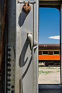Detail looking through antique rail coach to another train. Alamosa CO