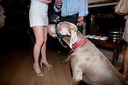 ELENA STRYGINA; ( WHITE DRESS)  Pimlico Road party. 22 June 2010. -DO NOT ARCHIVE-© Copyright Photograph by Dafydd Jones. 248 Clapham Rd. London SW9 0PZ. Tel 0207 820 0771. www.dafjones.com.