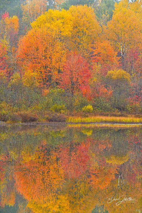 Autumn reflecytions in foggy Fairbank Creek, Greater Sudbury, Ontario, Canada