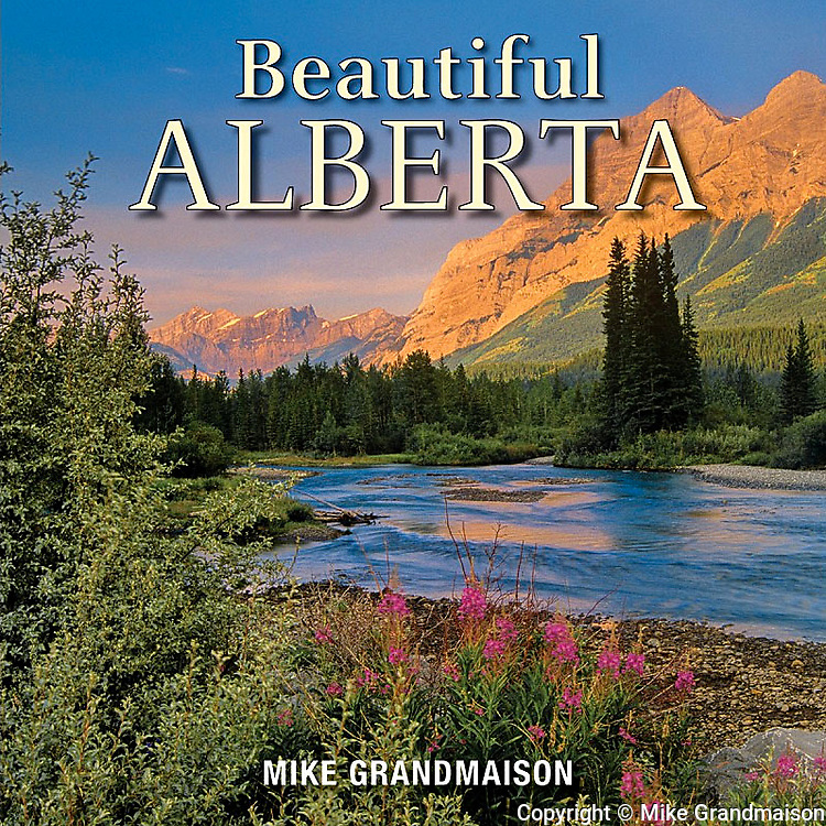 PRODUCT: Book<br />
