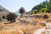 the use of a terrace is an ancient Agricultural technique to flatten a sloped mountain for cultivation Jerusalem mountains, Israel