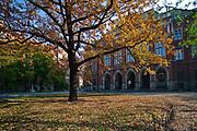 Collegium Novum Uniwersytetu Jagiellońskiego, krakowskie Planty, Polska<br /> Collegium Novum of Jagiellonian University, Cracow Planty, Poland