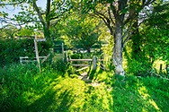 Green rural summer scene with footpath and sign with stile towards a lake in Nutbourne, West Sussex, England, UK