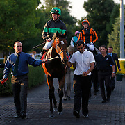 Nearly Caught and Jim Crowley winning the 7.30 race