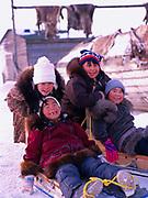 Inupiat children Sophia Ahmaogak, Krystal Ahmaogak, Jason Ahmaogak and Lorraine Tagarook playing on sleds, village of Wainwright, Arctic Coast, Alaska.