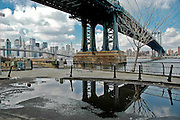 View of the Manhattan bridge and the Manhattan skyline from the East river bank in DUMBO, Brooklyn, New York, 2008. The tree has since fallen into the river.