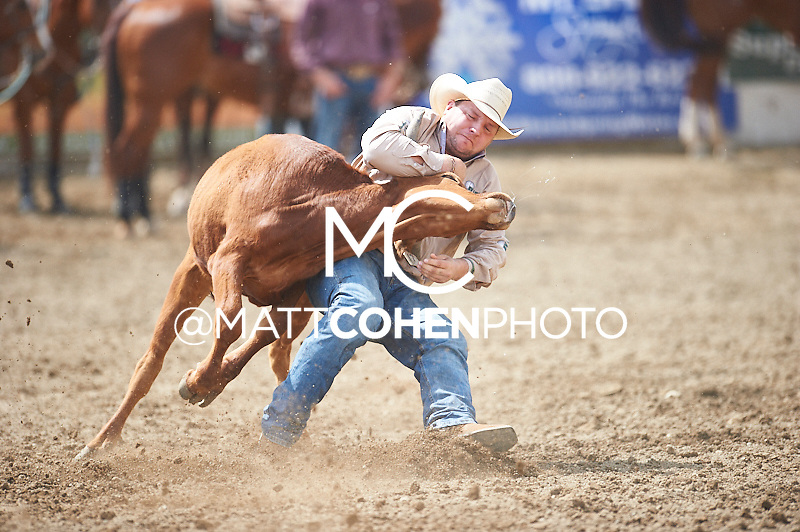 Steer wrestler Clayton Moore of Pouce Coupe, BC competes at the Redding Rodeo in Redding, CA.<br /> <br /> <br /> UNEDITED LOW-RES PREVIEW<br /> <br /> <br /> File shown may be an unedited low resolution version used as a proof only. All prints are 100% guaranteed for quality. Sizes 8x10+ come with a version for personal social media. I am currently not selling downloads for commercial/brand use.