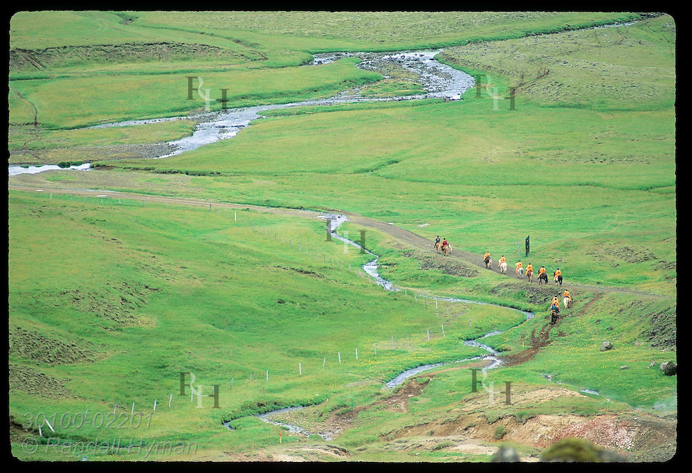 Overview of horse trekkers exiting trailhead onto road to ride thru Gufudalur back to Eldhestar stables; Hveragerdi, Iceland.
