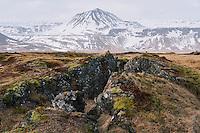 Búðahraun Lava field, Snæfellsnes Peninsula, West Iceland.