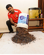 """Indian techie nails it! Busts puncture mafia, Man collects 50kg nails from roads in two years<br /> <br /> Benedict Jebakumar, a systems engineer working in Bengaluru, has collected over 50 kgs of nails scattered along roads, most of them deliberately planted by nearby puncture shops to benefit their business.<br /> <br /> In 2014 when he first moved to the city, the 44-year-old would often have to deal with a punctured tyre whenever he would take the Outer Ring Road to get back to his house in Banashankari from his office in Bellandur or vice-versa. <br /> <br /> While at first, he didn't think much of it, but when it began to become a common occurrence it dawned on him that the puncture was always caused by nails that were situated close to puncture shops.<br /> <br /> """"I have been witnessing the wilful act of repeated scattering of nails on the outer ring road (ORR) in Bangalore since 2012. This is done by the miscreants to make money out of fixing the flat tyre caused by their nails at an exorbitant rates. I have been informing the concerned authorities for remedial action but the problem still persists,"""" Jebakumar said in a petition that he has started online to tackle the menace.<br /> <br /> When authorities didn't do anything about the problem, he decided to take the matter in his own hands and started combing roads with his bare hands but later bought a magnetic stick to collect the nails.<br /> <br /> Jebakumar started a Facebook page called `My Road, My Responsibility' in 2014 to create awareness about the menace. He posts photos of the nails he collects in a day and also shocking videos of roads laden with dozens of nails.<br /> <br /> """"Sometimes I feel wretched when I think on how long I need to keep doing this same scavenging work with (no) result from the authorities. But if I don't continue, my own vehicle is sure to get flat since I can never drive in the middle of the road. Also, when I see stranded vehicles due to flat tyre, I feel that my action """