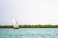 Transport Dhow sailing between islands, Vamizi Island, Mozambique