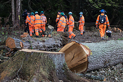 Denham, UK. 29th September, 2020. Tree surgeons working on behalf of HS2 Ltd and around two dozen security guards leave after felling trees in Denham Country Park for works connected to the HS2 high-speed rail link. Anti-HS2 activists based at the nearby Denham Ford Protection Camp and protesting against the destruction of the woodland contend that the area of Denham Country Park currently being felled is not indicated for felling on documentation supplied by HS2 Ltd.