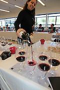 Israel, Barkan Winery. International wine tasting and grading session