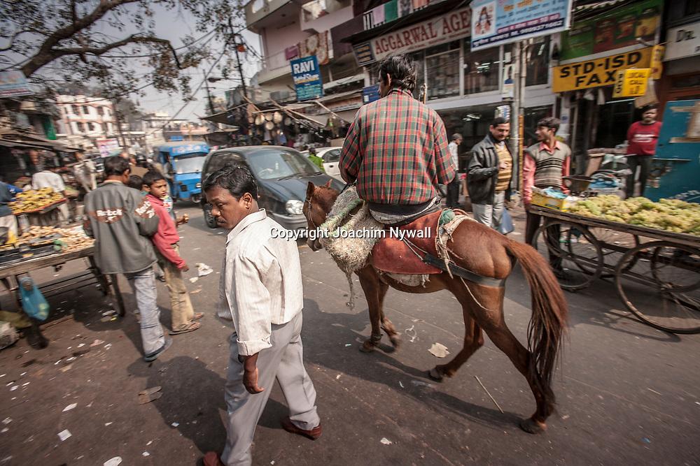 2007 01 29 Delhi India <br /> Paharganj Main Bazar<br /> Lokala matmarknaden kryddor grönsaker ris masala chili kokosnötter<br /> Man på åsna <br /> <br /> ----<br /> FOTO : JOACHIM NYWALL KOD 0708840825_1<br /> COPYRIGHT JOACHIM NYWALL<br /> <br /> ***BETALBILD***<br /> Redovisas till <br /> NYWALL MEDIA AB<br /> Strandgatan 30<br /> 461 31 Trollhättan<br /> Prislista enl BLF , om inget annat avtalas.