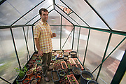 Teacher Chris Medinger holds a snow pea plant for repotting in the small greenhouse at the <br /> Downtown Value School.