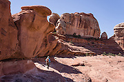 Sandstone pillars rise above a hiker on Peek-a-Boo Trail, in Needles District of Canyonlands National Park, Utah, USA. The Permian rocks of the Needles District formed where red alluvial fans from the east interwove with white dunes from the west, making spires striped red and white.