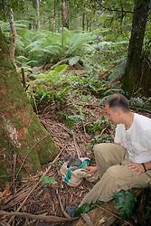 Chris Tilton Releasing Mountain Brushtail Possum