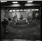 ..Morning  workout session in the Sado Gatake stable, 30 minutes west of Tokyo, .