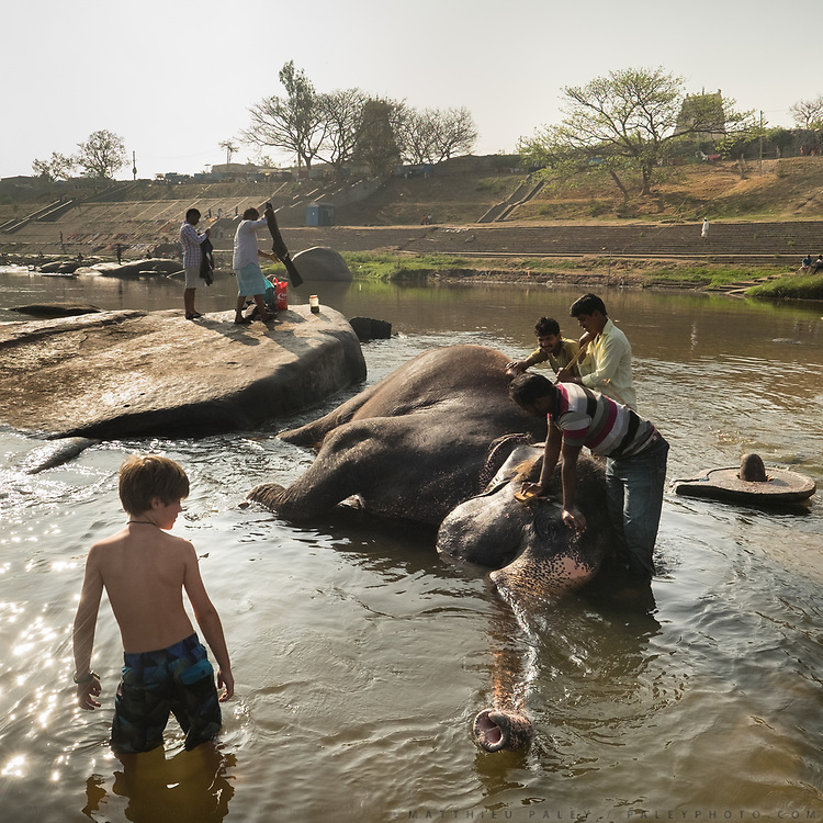 Boy looks at an elephant being washed.