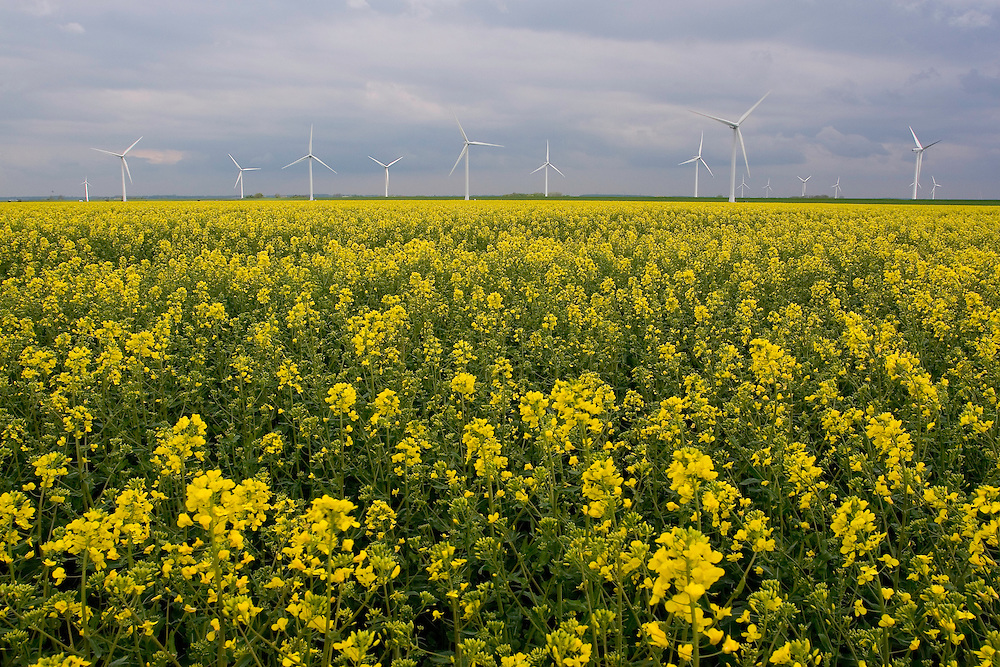 27.04.2009<br /> Wind-power station<br /> Around Westerhever, Germany