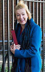 Downing Street, London, April 25th 2017. Environment, food and Rural Affairs Secretary Andrea Leadsom leaves the weekly cabinet meeting at 10 Downing Street in London. Credit: ©Paul Davey