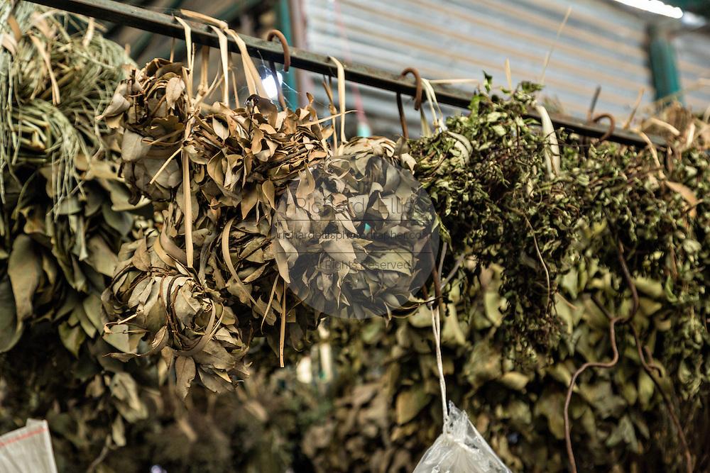 Dried herbs at Benito Juarez market in Oaxaca, Mexico.