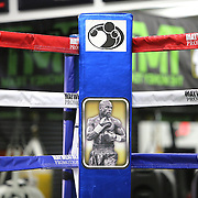 LAS VEGAS, NV - APRIL 14: The corner pad of the practice ring is seen prior to WBC/WBA welterweight champion Floyd Mayweather Jr. working out at the Mayweather Boxing Club on April 14, 2015 in Las Vegas, Nevada. Mayweather will face WBO welterweight champion Manny Pacquiao in a unification bout on May 2, 2015 in Las Vegas.  (Photo by Alex Menendez/Getty Images) *** Local Caption ***
