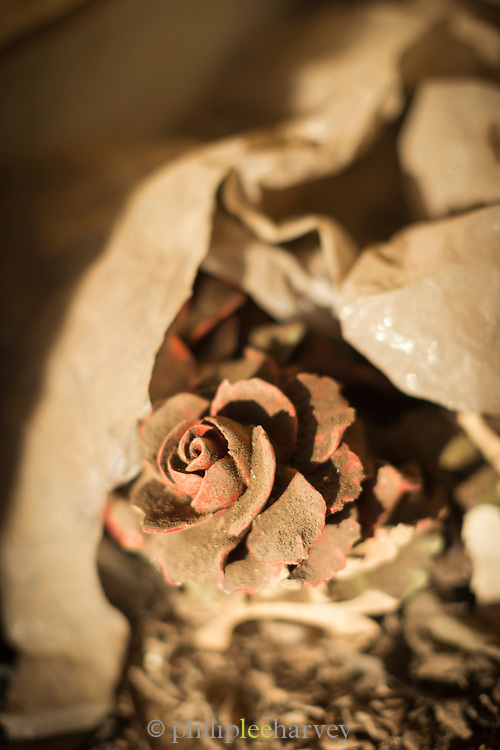 Ceramic rose at Christian cemetery in Casablanca, Morocco Cimetière el-Hank.