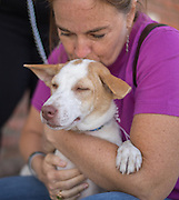Natalie Mathiasen cuddles Iman at the Dogs Without Borders adoption fair in Los Angeles. March 12, 2016.