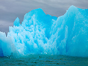 Icebergs calved from LeConte Glacier floating in LeConte Bay, Southeast Alaska.