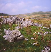 AJEM72 Upland limestone scenery Yorkshire Dales national park England