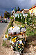 Small stall selling pumpkins outside a house in K?szegszerdahely (Koszegszerdahely) nr Velem , Hungary .<br /> <br /> Visit our HUNGARY HISTORIC PLACES PHOTO COLLECTIONS for more photos to download or buy as wall art prints https://funkystock.photoshelter.com/gallery-collection/Pictures-Images-of-Hungary-Photos-of-Hungarian-Historic-Landmark-Sites/C0000Te8AnPgxjRg