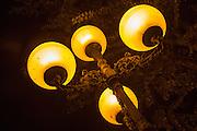 Traditional style old streetlights at night in Jerez de la Frontera, Spain