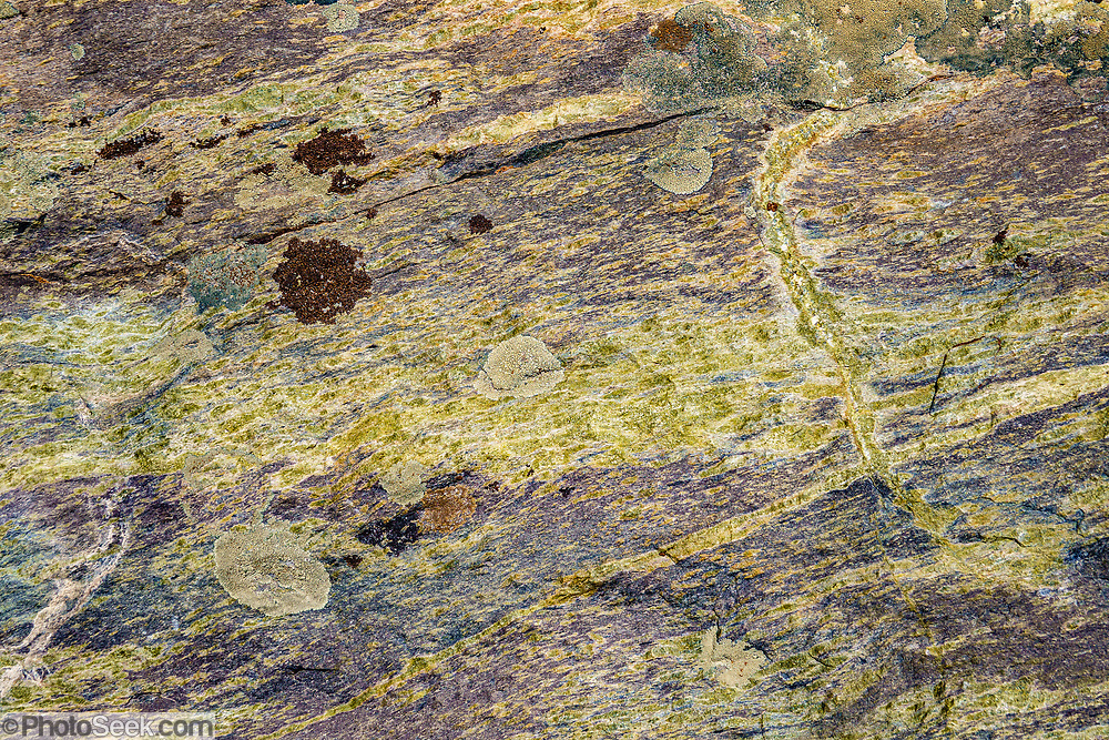 Yellow green and purple rock pattern along the trail to Shadow Lake (7.5 miles, 1200 ft gain) in Ansel Adams Wilderness, Inyo National Forest, Sierra Nevada, Mammoth Lakes village, California, USA.