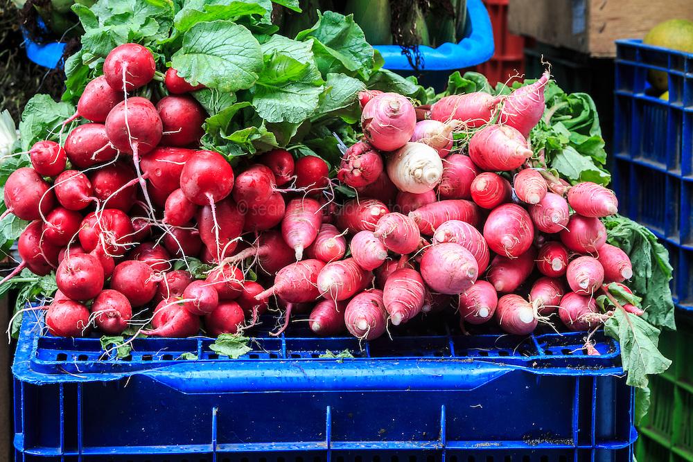Fresh radishes in market, San Ramon, Alajuela, Costa Rica, Costa Rica.Costa Rica.