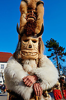 Bulgarie, region de Pernik, Dolna Sekirna, jour de carnaval, la procession des Kukeri portant des masques destinés à faire peur au froid et à l'hiver // Bulgaria, Pernik Region, Dolna Sekirna town, carnival day, Kukeri procession, ferocious beasts with coats of fur and feathers and large masks with fangs, beaks, and wings who scare the cold and the evil winter spirits away