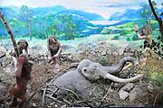 Israel, Haifa, The Prehistoric Museum
