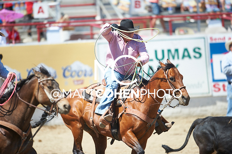 Team roper Bobby Boyd of Midland, TX competes at the Redding Rodeo in Redding, CA<br /> <br /> <br /> UNEDITED LOW-RES PREVIEW<br /> <br /> <br /> File shown may be an unedited low resolution version used as a proof only. All prints are 100% guaranteed for quality. Sizes 8x10+ come with a version for personal social media. I am currently not selling downloads for commercial/brand use.