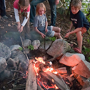 Three children roasting marshmallows on an open fire, with parental supervision